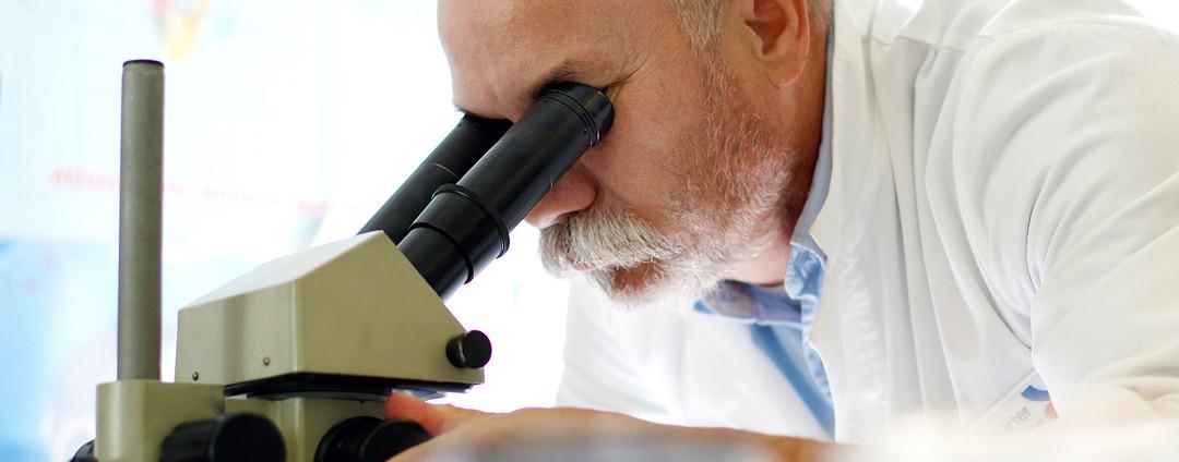 slider_mikroskop